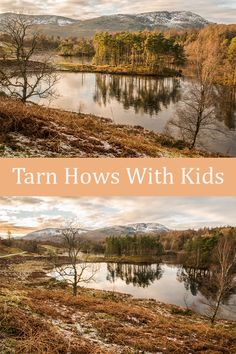 A man-made lake north of Conniston & west of Windermere, overlooked by Coniston hills & Langdale Pikes, Tarn Hows with Kids is a great walk. Mini Waterfall, Start Of Winter, Great Walks, Light Pollution, Winter Light, The Monks, Autumn Trees, Lake District
