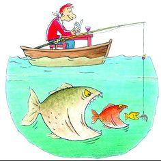 Voedselketen vis