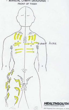 Manual Lymph Drainage Thigh Illustrated   Remember, start at top of thigh and work your way down to the knee.  Pulling gently from back of leg toward the front, where the lymph drainage pattern is.…
