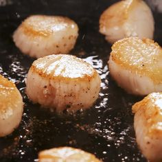 Best Seared Scallops Scallops take mere minutes to sear to perfection These are simply seasoned so they work well with any number of dishes Get the recipe at Best Seafood Recipes, Fish Recipes, Seafood Casserole Recipes, Shrimp Recipes, Recipies, I Love Food, Good Food, Yummy Food, Cooking Recipes