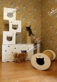 Pet furniture :)