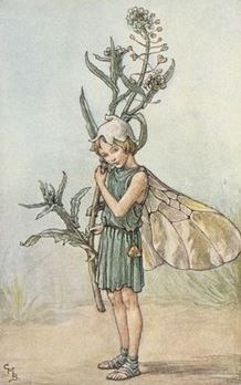 Cicely Mary Barker | The Shepherd's Purse Fairy