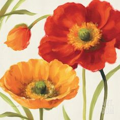 Poppies Melody III Stretched Canvas Print by Lisa Audit at Art.com