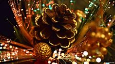 Christmas decoration--I like the gold paint or you could put gold glitter on the edges (nice project kids could help with)