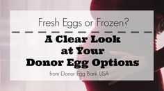 Fresh Eggs or Frozen? A Clear Look at Your Donor Egg Options http://orlando.citymomsblog.com/fresh-eggs-frozen-clear-look-donor-egg-options/