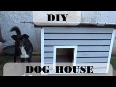 Building a Dog House on the cheap white insulated walls. - YouTube Build A Dog House, Dog Houses, Walls, Exterior, Building, Outdoor Decor, Dogs, Youtube, Buildings