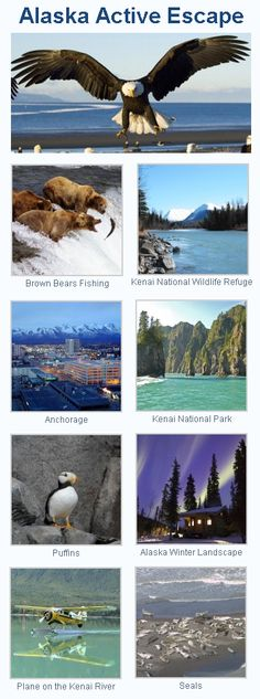 Alaska Active Escape - Adventure Travel