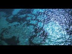 Belize: Beaches & Reefs