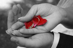 Erotik Hochzeitsringe, Trauringe oder Eheringe  http://blog.aus-liebe.net/hochzeitsringe-trauringe-eheringe/  #Eheringe #Herz #Hochzeit #Hochzeitsgedichte #Hochzeitsreise #Hochzeitsringe #IchliebeDich #Kuss #Liebesglück #Traumhochzeit #Trauringe