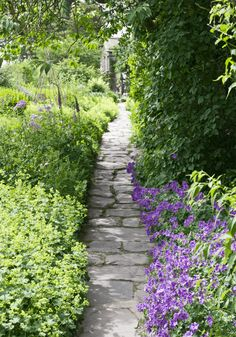Here are the basics of planting and growing flower border gardens to help you create your own flower border in your outdoor space. Garden Borders, Garden Paths, Flower Borders, Flagstone Pathway, Pathway Stone, Unique Garden, Path Ideas, Olive Garden, Picture Design