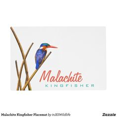 Add some extra spice to your table setting with Malachite placemats from Zazzle! Design your placemat with your own artwork or favorite photo. African Safari, Kingfisher, Placemat, Malachite, Wildlife Photography, Dining, Kitchen, Dinner, Cucina