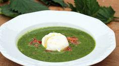 Ein Teller Brennnessel-Suppe © NDR Fotograf: Florian Kruck