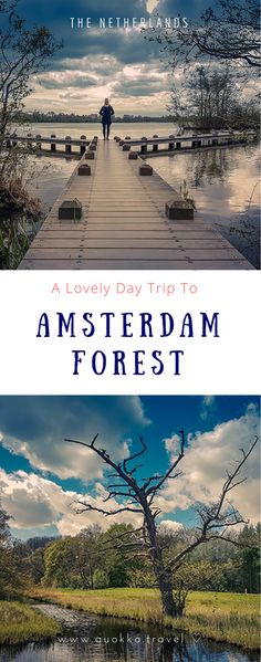 Amsterdam Forest is my go-to place to unwind. The park has beautiful hiking trails, spots to meet animals and great places to eat apple pie with whipped cream. Just 15 minutes by bike, the park makes a great day trip from Amsterdam. Nature lovers, happy families and Dutch landscape fanatics, embrace this complete guide and get lost in Amsterdam Forest!