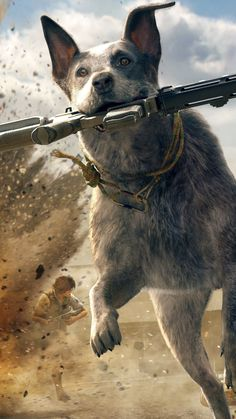 Welcome to Krampus Gaming! Qhd Wallpaper, Hd Wallpaper 4k, Gaming Wallpapers, Far Cry 5 Game, Far Cry 4, Watch Dogs 1, Playstation, Fanarts Anime, Australian Cattle Dog