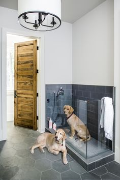 The Sheehans' two golden retrievers, Burton and Roscoe, enjoy the outdoors as much as their children, swimming in the pool on a daily basis. To accommodate the two occasionally soaking-wet dogs, Sheehan incorporated a dog wash in the mudroom right off the Dog Washing Station, Dog Feeding Station, Pet Station, Sweet Home, Dog Rooms, Rooms For Dogs, Dog Shower, Dog Houses, Dream Houses