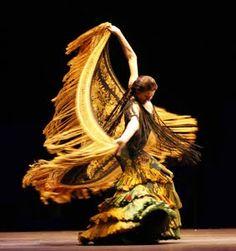 Flamenco in motion...