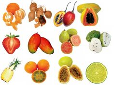 tropical fruit - Google Search