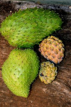 Sweetsop & soursop - supposedly in small doses it keeps cancer away. If used in large doses it can be toxic and deadly. Do your research before eating.