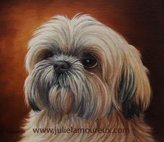 "Pet Portraits by Julie Lamoureux                 Marley""8x9"" Oil on Linen Panel - Shih Tzu"