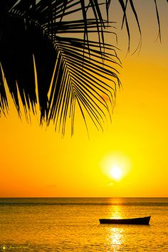 Martinique =)