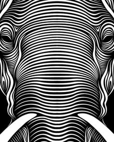 In his series entitled Faces, designer Patrick Seymour from Montreal Canada uses bold lines and symmetry to create some striking line art illustrations. Patrick on Behance