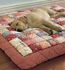 25 Amazing Dog Bed Heating Pad Outdoor Dog Beds Large Clearance Prime – Famous Last Words Diy Dog Bed, Cool Dog Beds, Large Dog Beds, Outdoor Dog Bed, Animal Projects, Pet Beds, Puppy Beds, Dog Houses, Diy Stuffed Animals
