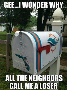 Patriots Dolphins Meme : patriots, dolphins, Dolphins