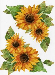 Sunflower Images, Sunflower Art, Decoupage, Country Scents Candles, Sunflower Quilts, Spider Art, Denim Art, Stained Glass Flowers, Cute Wallpaper For Phone