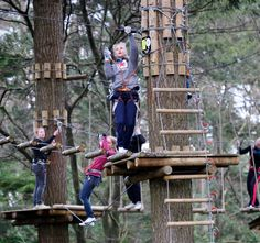 """""""Climbing forest"""", klimbos Bergen op Zoom, NL"""