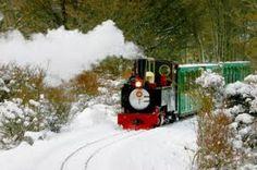 Tren del Fin del Mundo - Ushuaia /  - All Terra Eco Turismo