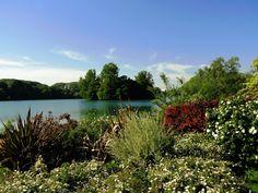 France, France, Landscape, Scenic, Flowers #france, #france, #landscape, #scenic, #flowers
