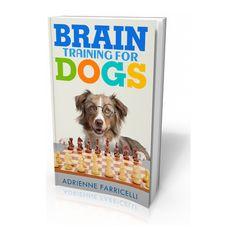 Dog Training Techniques, Dog Training Videos, Brain Training, Training Your Dog, Agility Training, Training Classes, Dog Agility, Puppy Training Schedule, Training Plan