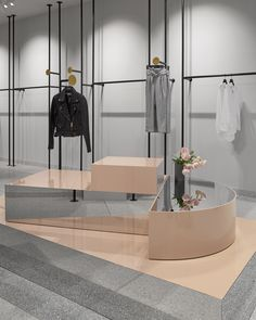 Just the display fixtures.  An idea for presenting the clothing if we don't do built ins or niches.