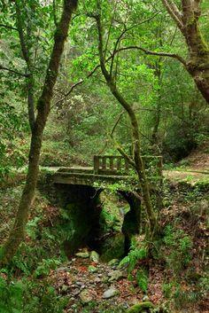 Wandertour 1: Madeira Wandern im Nordosten