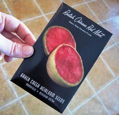 Seed starting for biodiversity, pest control and fun!  - Common Sense Homesteading