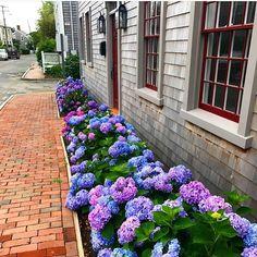 "1,385 Likes, 7 Comments - Nantucket Photos (@nantucketphotos) on Instagram: ""Downtown day Photo: @caktastico"""