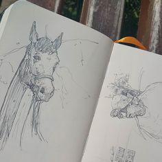 Гуляю по городу. Откуда я взял лошадь?
