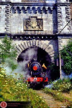 Estación de Canfranc - Page 21 - SkyscraperCity la locomotora Baldwin I salió una vez por el túnel de sompo