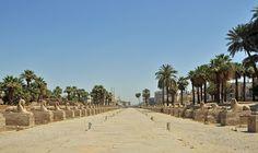 Le Temple de Louxor est le complément méridional du Temple d'Amon à Karnak. Il était dédié essentiellement au Ka divin du roi, et à la forme génitrice du dieu dynastique sous son aspect d'Amon-Min. Situés à environ 2 km l'un de l'autre, les deux temples étaient autrefois reliés par un dromos bordé de sept cents sphinx à tête humaine (à Louxor) ou à tête de bélier (à Karnak), et de stations ou chapelles reposoirs où s'arrêtaient les barques de la triade thébaine lors de la grande fête d'Opet. Sphinx, Chapelle, Kaneki, Ancient Egypt, Dolores Park, Empire, Country Roads, Beach, Luxor