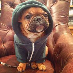 """Humph. Shopping is sooooo boring, But I do like my new Hoodie""…"