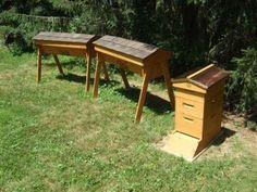 Veggie Gardening Tips Apiar 300x225 The Experiences of Backyard Beekeeping