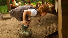 How To Raise Chickens In A Tiny Yard
