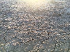 Dry crackled dirt Snake In The Grass, Hardwood Floors, Flooring, Concept, Texture, Wood Floor Tiles, Surface Finish, Wood Flooring, Floor