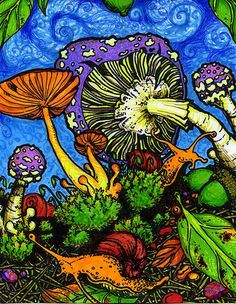 Image result for psychedelic mushroom art