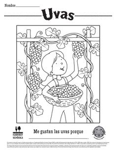 Cranberry, blueberry fruit or berries in a bowl coloring