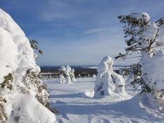 On helppo ymmärtää, että Riisitunturi on valittu Vuoden Retkikohteeksi 2010. Riisitunturi, Posio. Mount Rushmore, Mountains, Nature, Travel, Naturaleza, Viajes, Destinations, Traveling, Trips