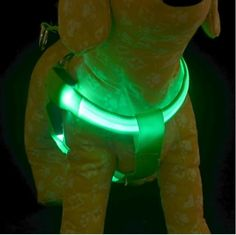 Glow Harnesses for Dogs LED (S-XL) (6 Colors) | Good Life Merchant