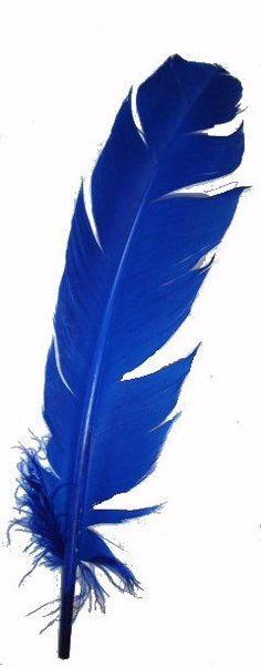 Kornblumenblau (Farbpassnummer 28) Inspirationen aus der Natur! Kerstin Tomancok Farb-, Typ-, Stil & Imageberatung