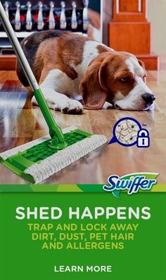 Cleaning up dog or cat hair can be a real pain. Learn helpful tips with Swiffer Sweeper and Dusters to clean up pet hair quick and easy. Training Collar, Training Your Dog, Training Tips, Agility Training, Dog Agility, Training Classes, Training Equipment, Training Academy, Training Videos