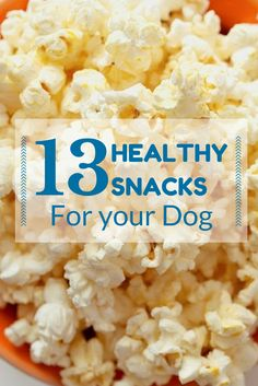 Pets LOVE human food, but some food may do them no good... Here's a list of healthy treats your pets will love, followed by a list of foods you will need to avoid at ALL costs!